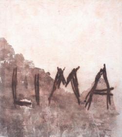 LIMA    (Cat N° 6985)