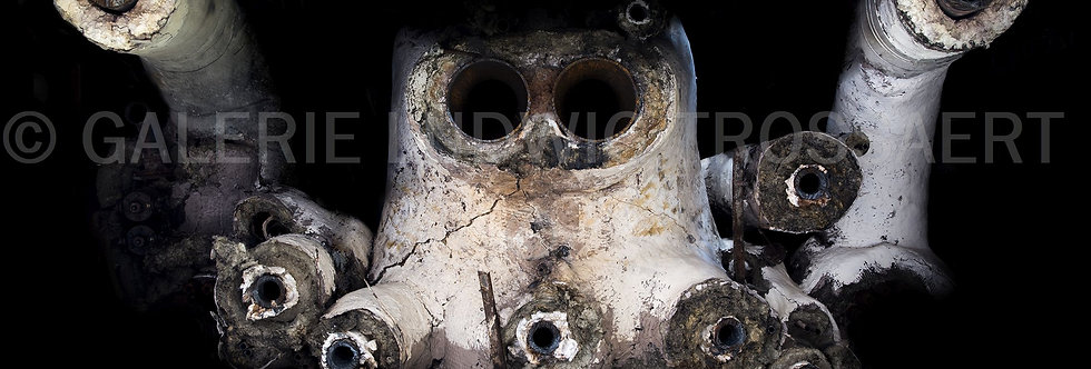 Industrial Faces 2015 #10    (Cat N° 5065)