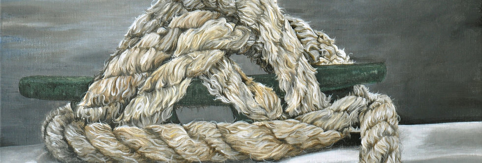 Losvast    (Cat N° 5505)