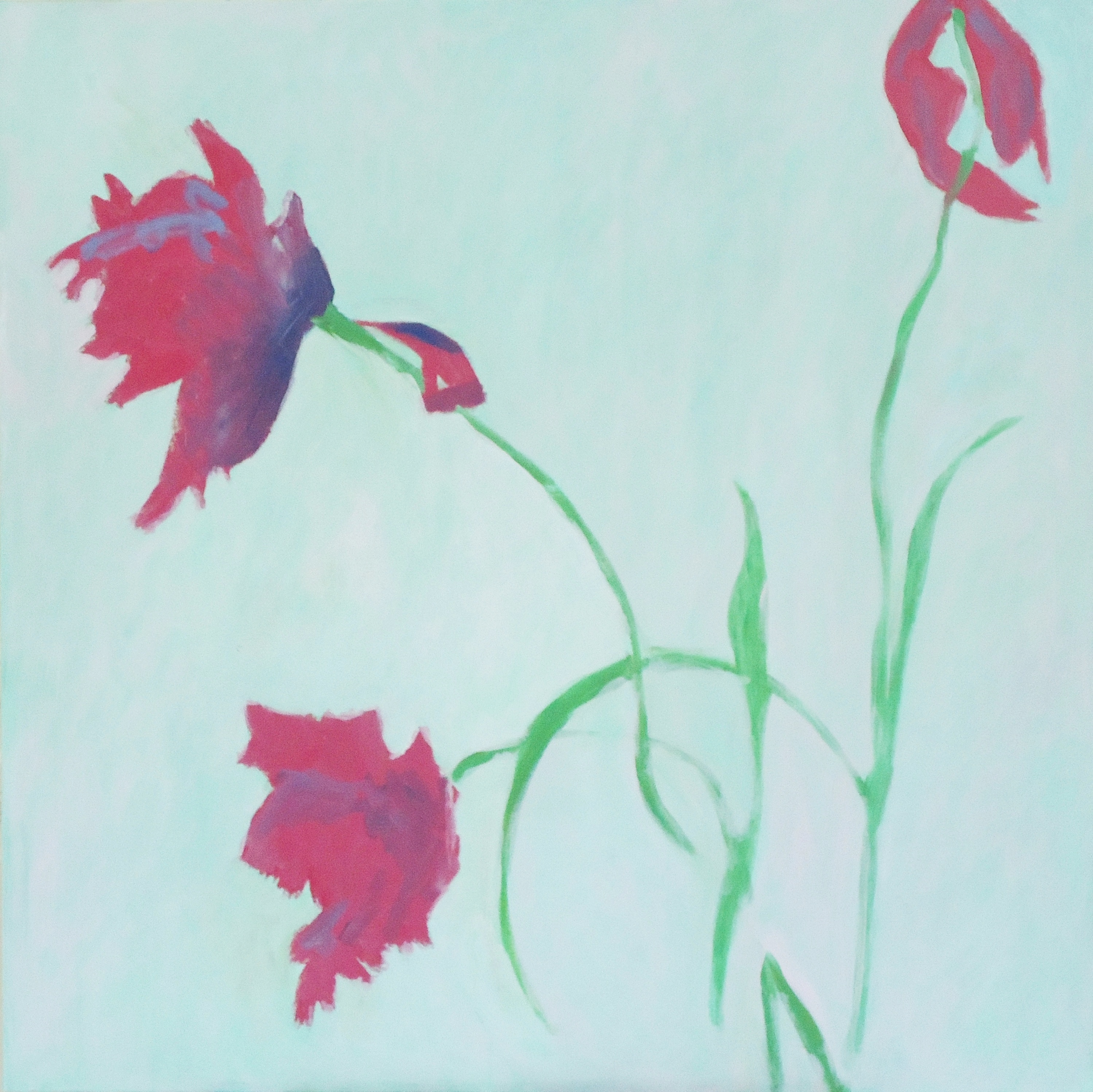Three Tulips    (Cat N° 7023)