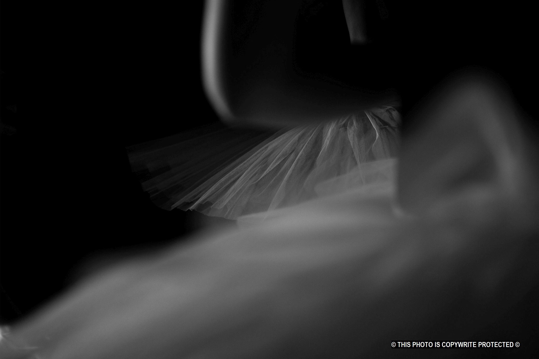 Ballerina    (Cat N° 6861)
