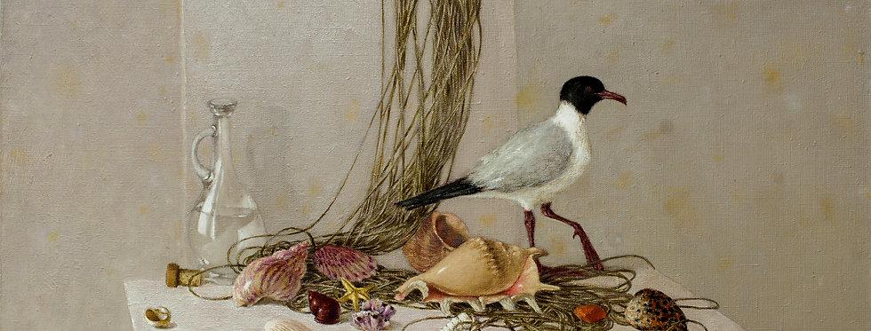 """Still life with Sea Gull""    (Cat N° 5474)"