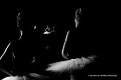 Ballerina    (Cat N° 6866)