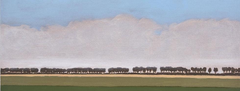 Whispering trees    (Cat N° 5607)