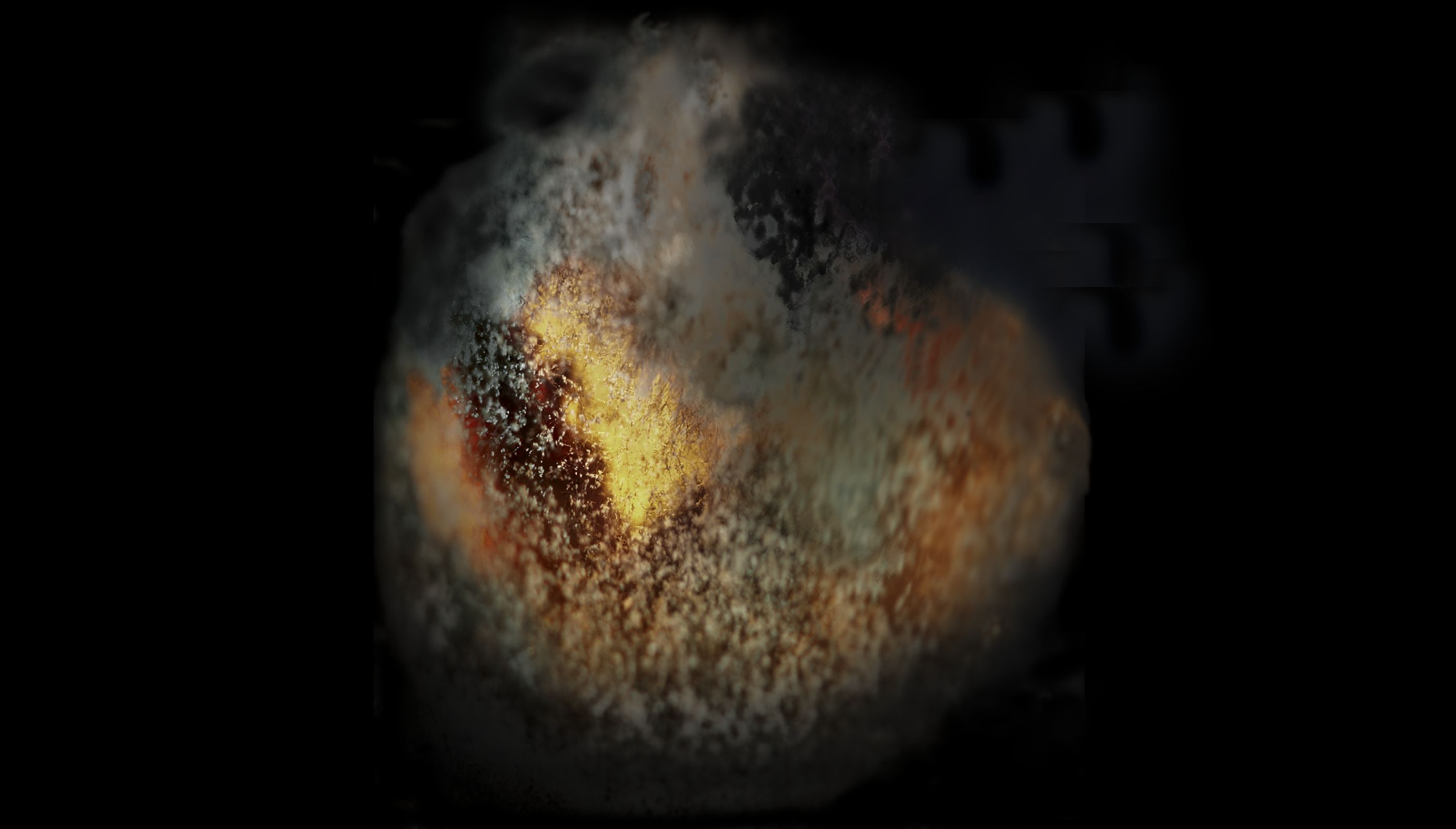 Mouldy Fig 40     (Cat N° 7006)