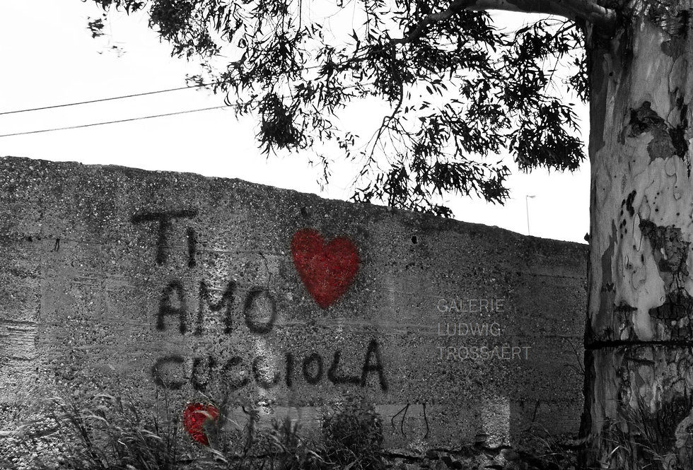 Ti Amo    (Cat N° 6545)