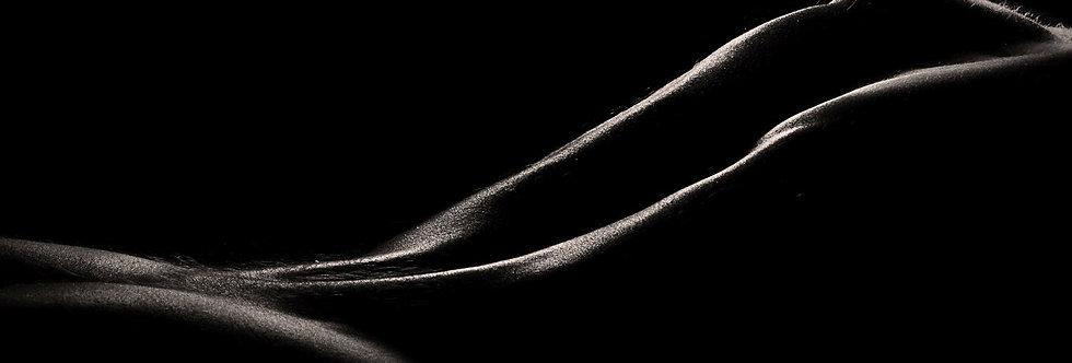 La Linea 21    (Cat N° 6645)