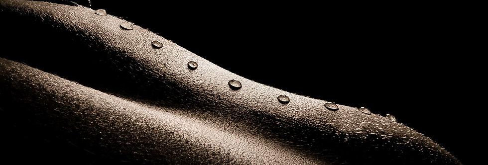 Droplets 16    (Cat N° 6562)