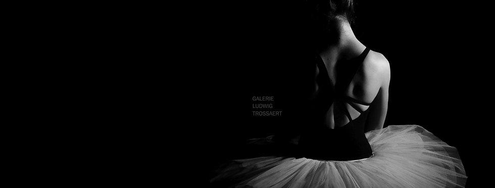 Ballerina    (Cat N° 6495)