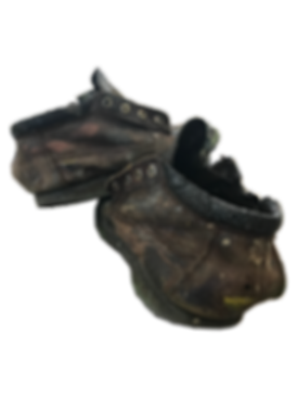 SHOES1.png