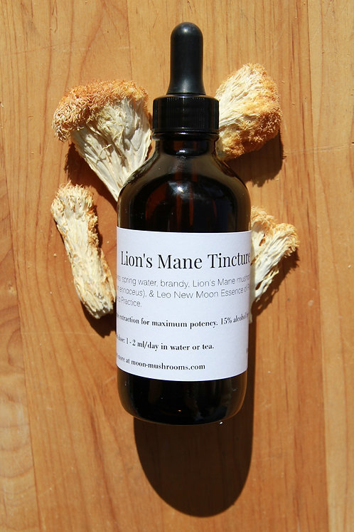 Lion's Mane Tincture - Leo New Moon Essence of Putting Essence to Practice