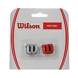 WilsonDempers.jpg