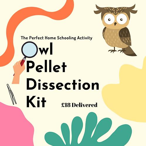 Owl Pellet Dissection Kit
