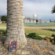 LagunaBeach2015_edited.jpg