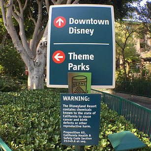 DowntownDisney2016_edited.jpg
