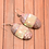 Thumbnail: Pink And White Oval Earrings