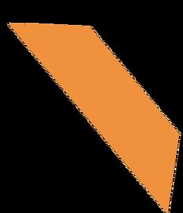Logo single orange.png