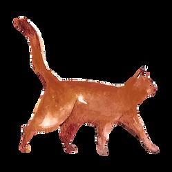 Watercolor Cat  5