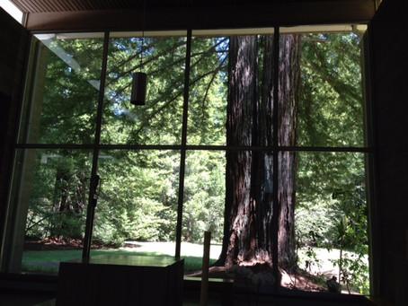 Chapel at Redwoods Monastery