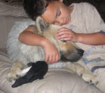 sleeping_buddies.jpg