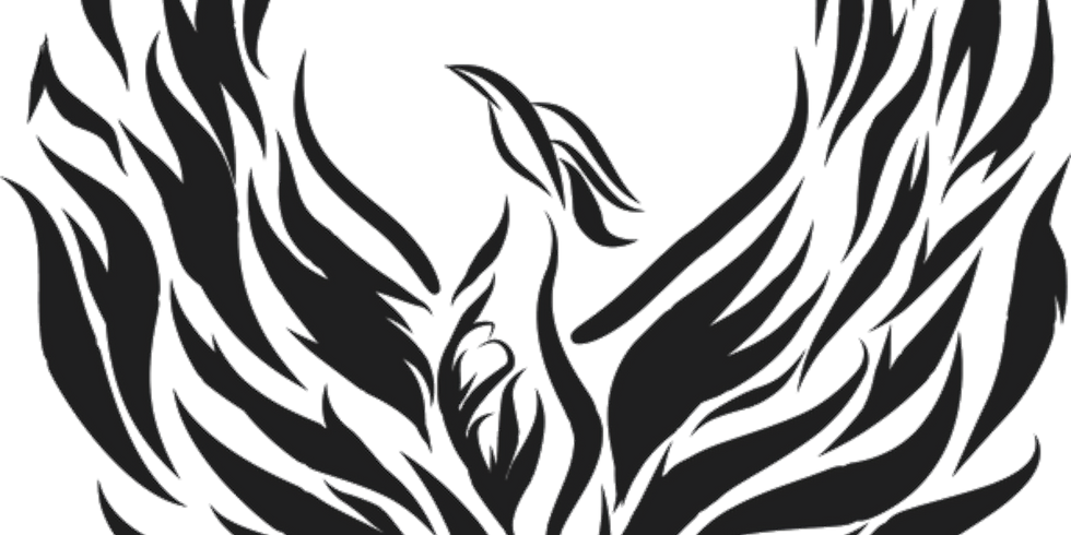 Prepare your Pelvic Floor for Birth using the Phoenix Heart ARISE™ program (1)