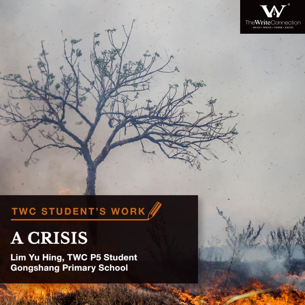 A Crisis, TWC Student's Composition, Model Composition