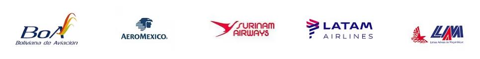 Cara Aviation Servics