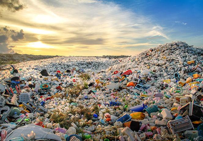 Waste Pile.jpeg