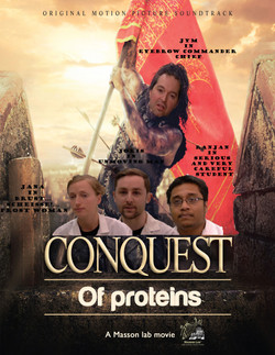 The conquest of proteins