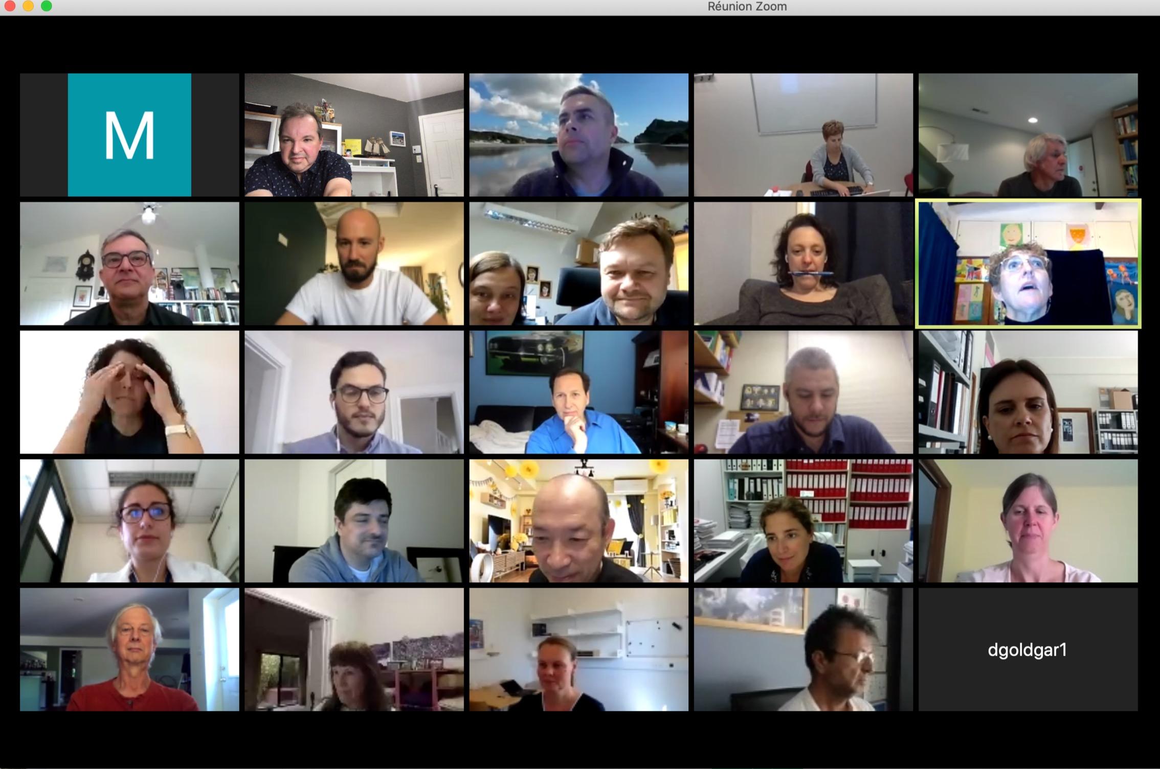 ENIGMA e-meeting 2020