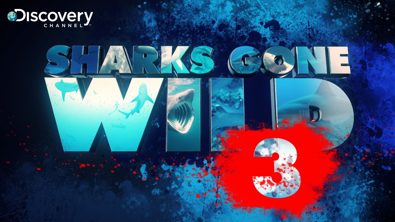 SHARKS GONE WILD | DISCOVERY