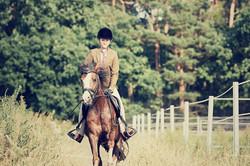 Paardrijden Sallandse Heuvelrug