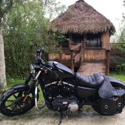 Billie Swamp, Florida, 2018