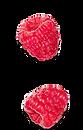 raspberries.png