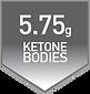 KETON BODIES.png