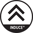 induce icon.png