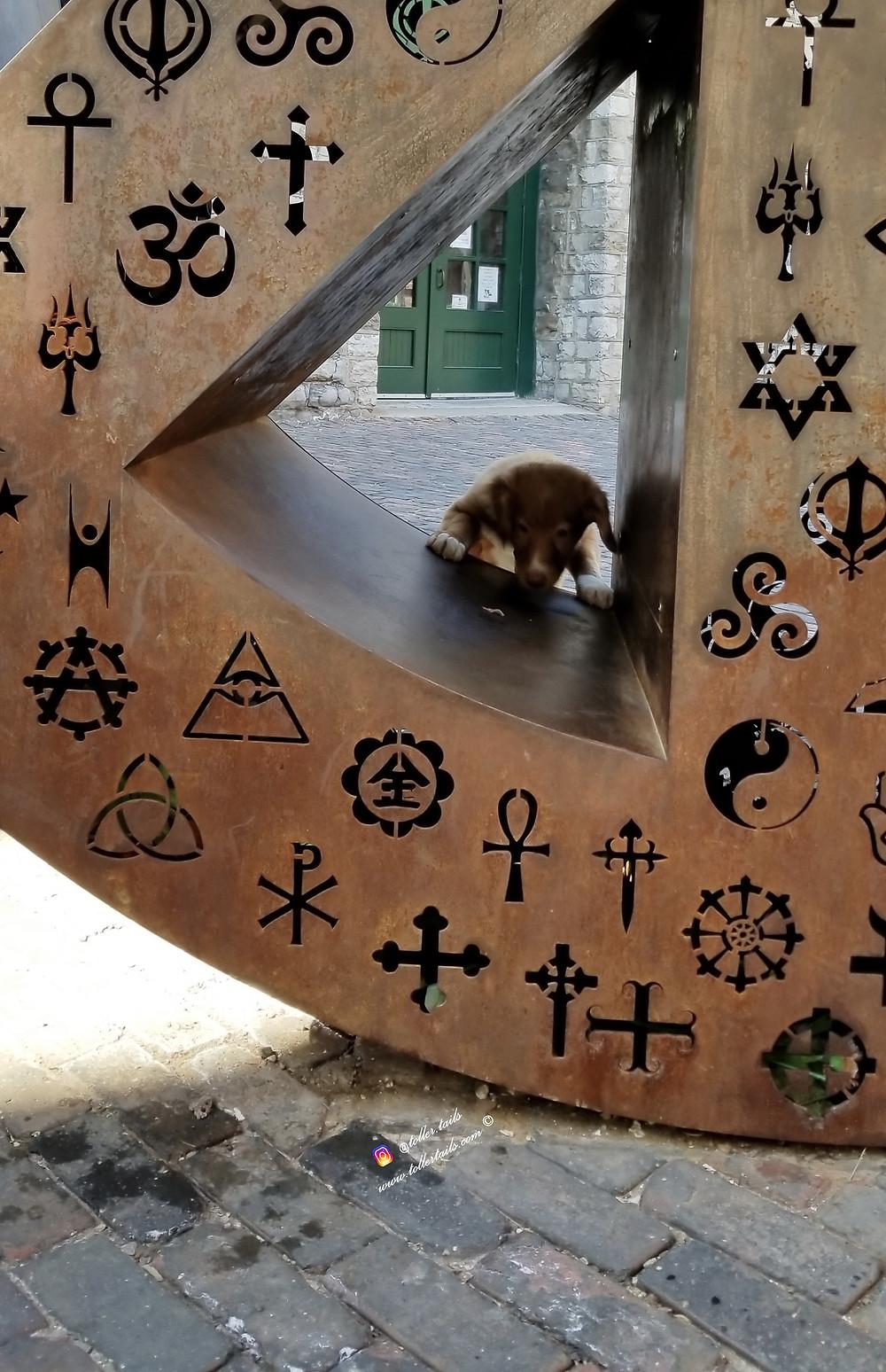Hedy Toller Tails a puppy sniffs a sculpture