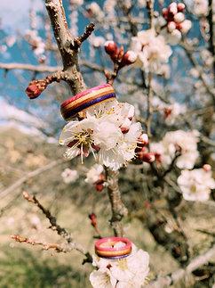 Blossom (narrow)