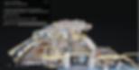 Screen Shot 2020-05-18 at 4.04.25 PM.png