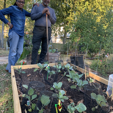 Backyard Gardeners in the Fight Against Food Insecurity