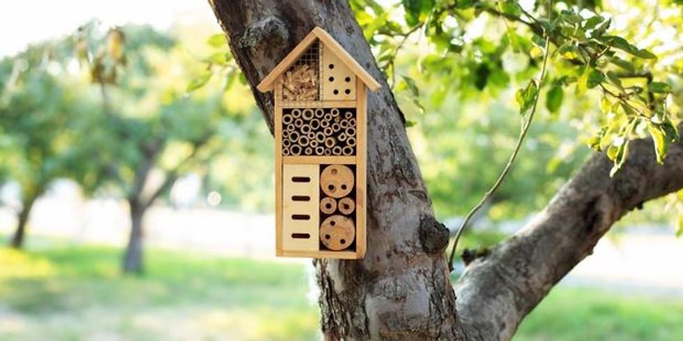 Atelier en famille - hôtel à insectes