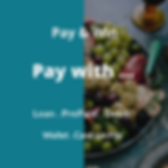 paywith1.png