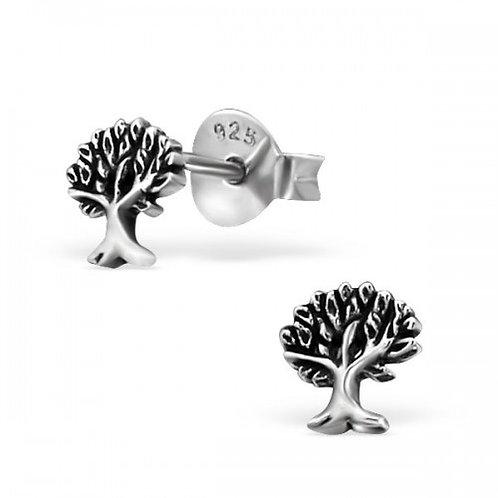 Tree - 925 Sterling Silver Plain Ear Studs