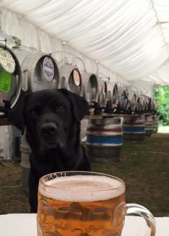 Henry Beer Festival.jpg