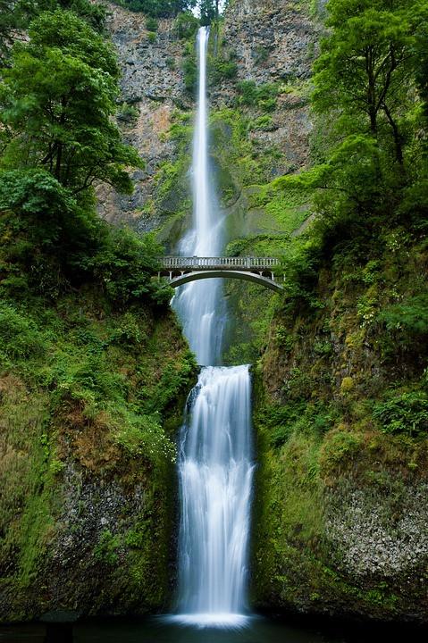 Fülle der Lebensenergie mit Kinesiologie- Im Fluss der Lebensenergie