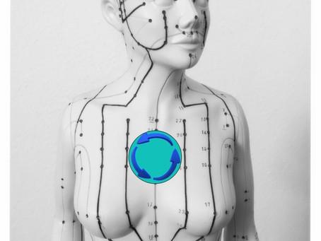 Thymusdrüse aktivieren und Lebenskraft stärken