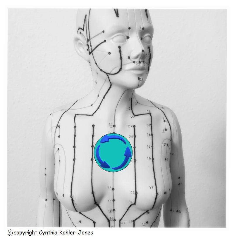 Thymusdrüse stärken für mehr Lebensenergie- Im Fluss der Lebensenergie