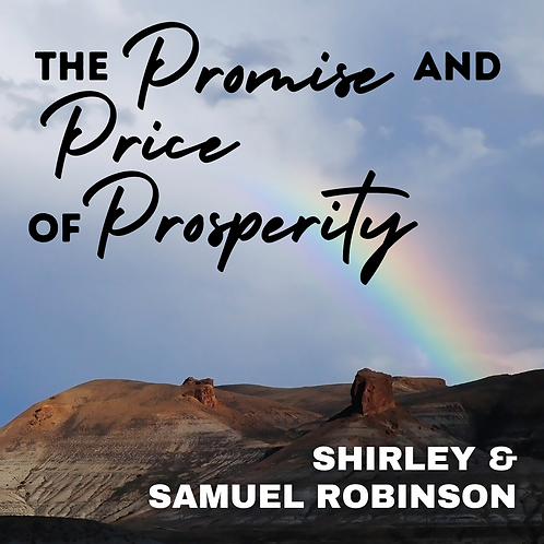 The Promise and Price of Prosperity