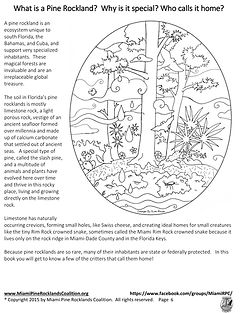 Get to Know Florida's Pine Rockland Critters page 4 illustrated by Kim Heise