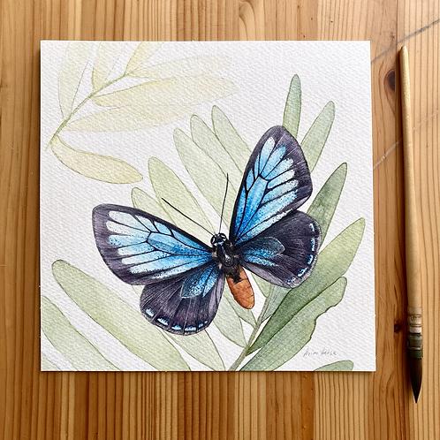 Atala Butterfly original watercolor